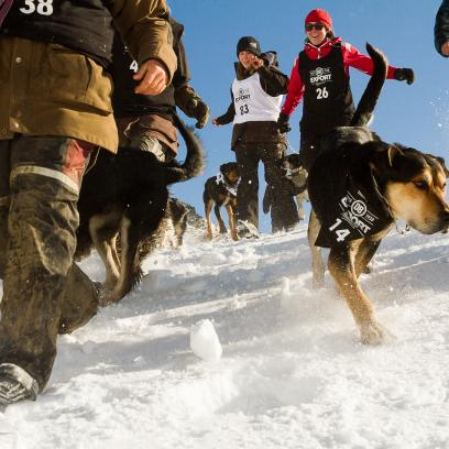 Dogs and masters enjoyed epic snow conditions at The Remarkables for the Dog Derby media